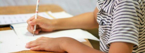 小学生の通信教育は価格ではなく「自由度の高いテスト」で選ぶ